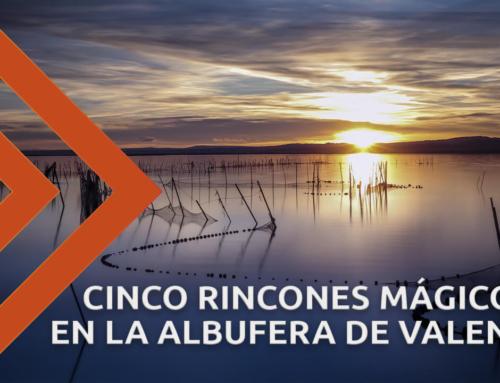 Los 5 lugares más bonitos de la Albufera de València